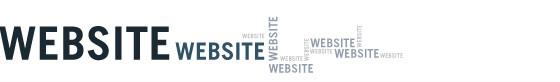 Webstie2