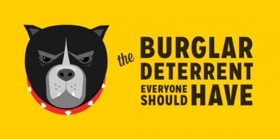 The Burglar Deter Everyone Should Have