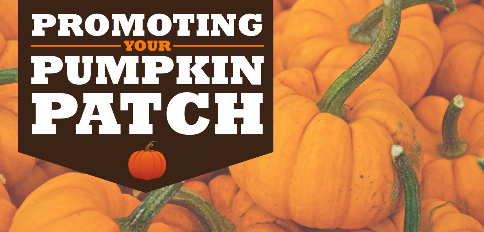 How To Market A Pumpkin Patch For Profit Signs Com