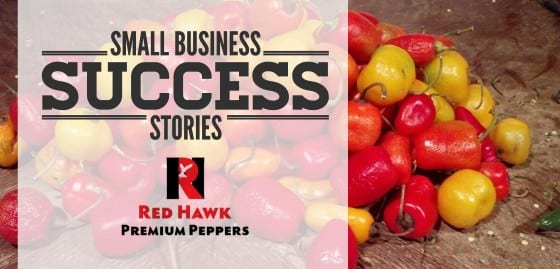 Small Business Succes Red Hawk Peppers feature image