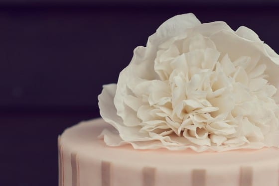 Country Cake Shop Cake White Flower