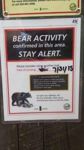 Bear Signs