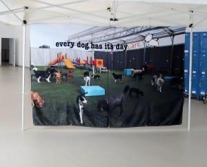 Design Dog Banner